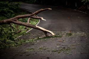 Road Debris Can Cause Catastrophic Injuries, Especially to Motorcycle Riders